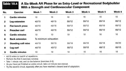 a six week aa phase for entry level or recreational boduybuilder