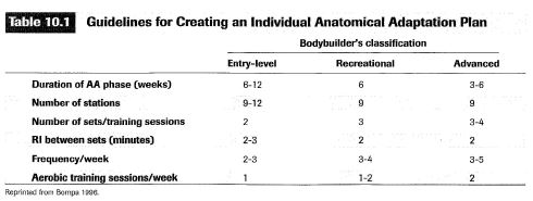 guideline for creating an individual anatomical adaptation plan
